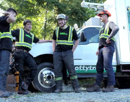 Arborist Consultations-Loxahatchee Tree Trimming and Tree Removal Services-We Offer Tree Trimming Services, Tree Removal, Tree Pruning, Tree Cutting, Residential and Commercial Tree Trimming Services, Storm Damage, Emergency Tree Removal, Land Clearing, Tree Companies, Tree Care Service, Stump Grinding, and we're the Best Tree Trimming Company Near You Guaranteed!