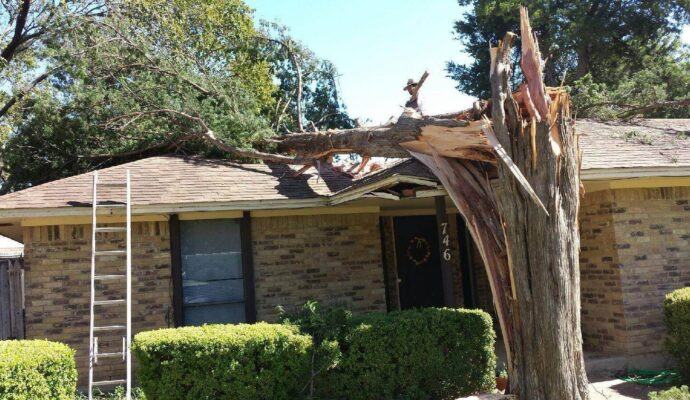 Residential Tree Services-Loxahatchee Tree Trimming and Tree Removal Services-We Offer Tree Trimming Services, Tree Removal, Tree Pruning, Tree Cutting, Residential and Commercial Tree Trimming Services, Storm Damage, Emergency Tree Removal, Land Clearing, Tree Companies, Tree Care Service, Stump Grinding, and we're the Best Tree Trimming Company Near You Guaranteed!