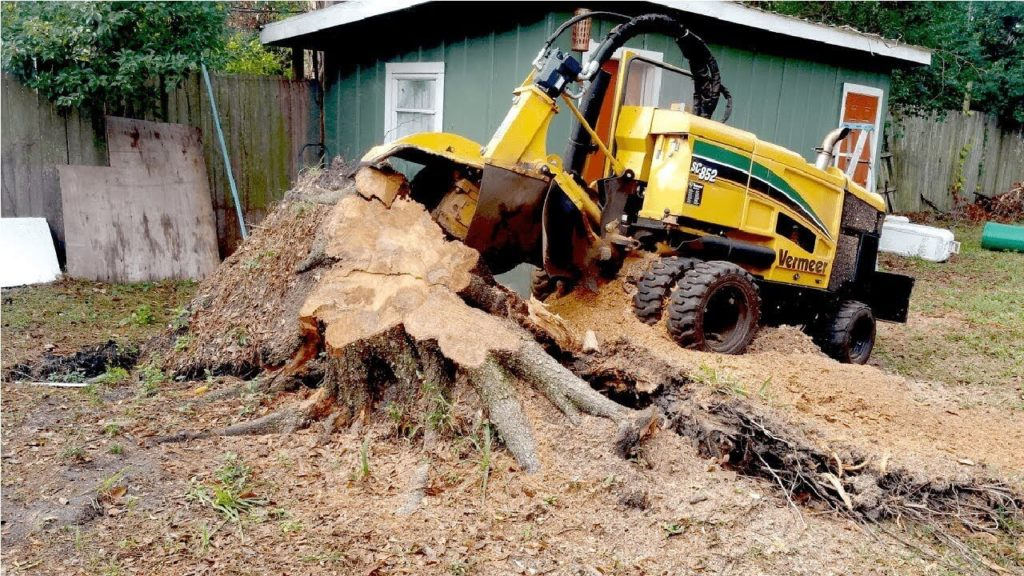 Stump Grinding-Loxahatchee Tree Trimming and Tree Removal Services-We Offer Tree Trimming Services, Tree Removal, Tree Pruning, Tree Cutting, Residential and Commercial Tree Trimming Services, Storm Damage, Emergency Tree Removal, Land Clearing, Tree Companies, Tree Care Service, Stump Grinding, and we're the Best Tree Trimming Company Near You Guaranteed!