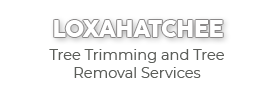 Loxahatchee Tree Trimming and Tree Removal Services-new logo